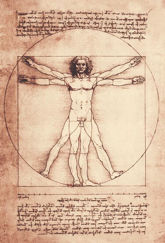 Modelul de tapet Vitruvio, colectia Leonardo